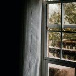 How to Prevent Summer Mold Growth